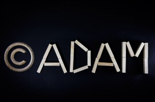 Adam-Propriete-intellectuelle